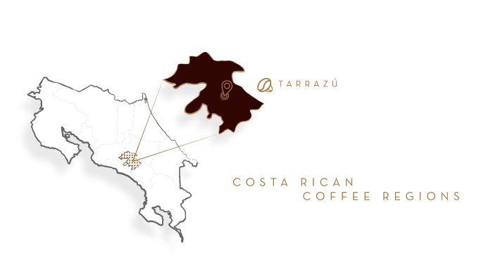 Кофе из Коста-Рики Terrazu