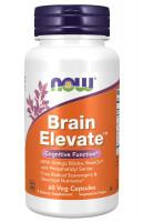 Brain Elevate NOW, 60 Veg Capsules