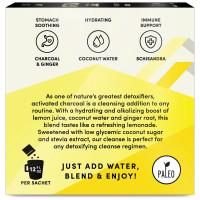 Лимонад с древесным углем Terrasoul