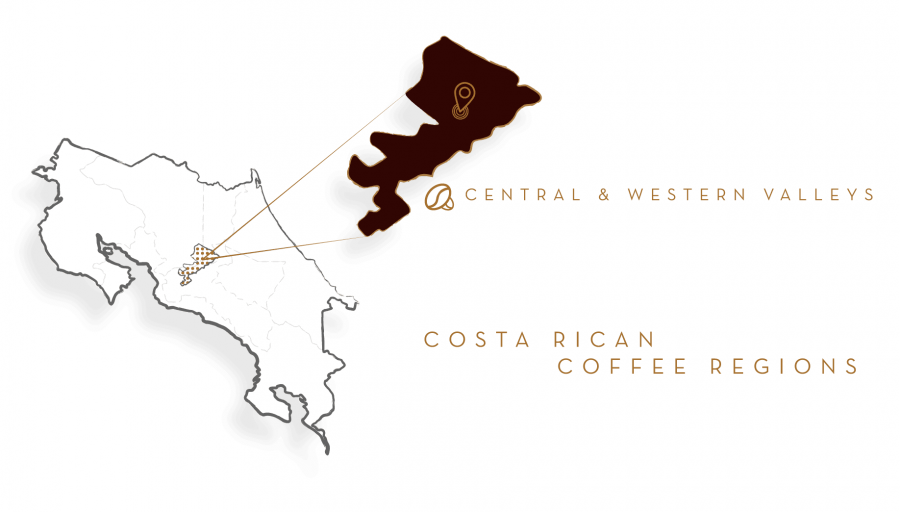 Кофе в зернах Café Britt Dark Roast, 340 г