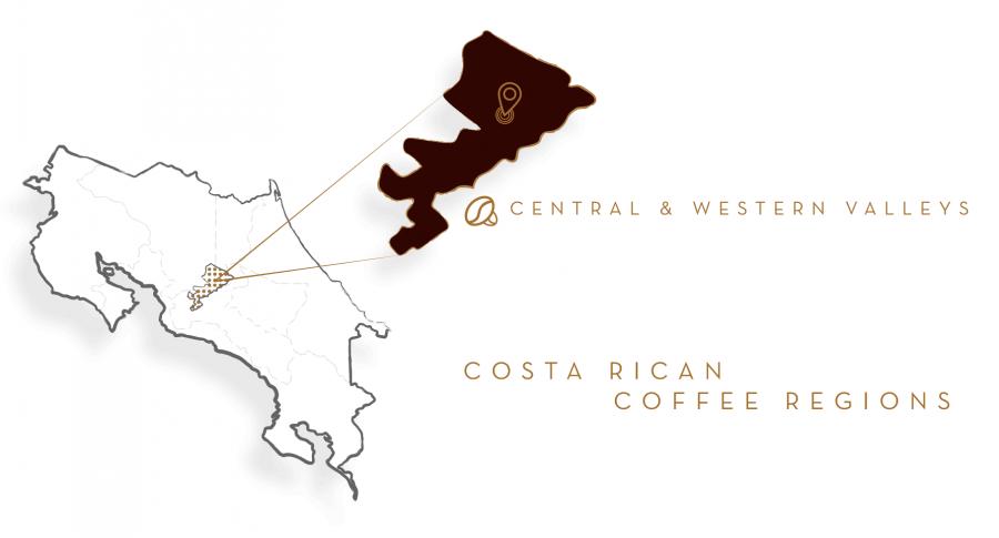 Café Britt Decaffeinated Coffee whole bean, 2 Lb