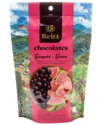 Dark Chocolate Covered Guava Britt, 6 oz