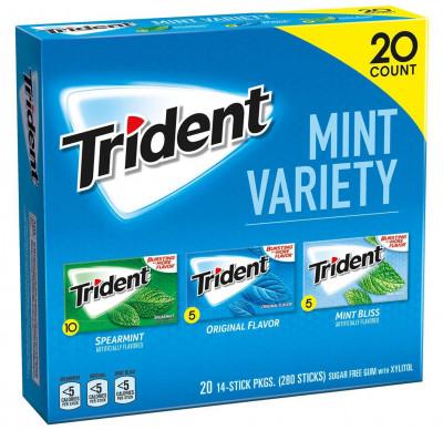 Trident Mint Gum Variety Pack, 20-ct.